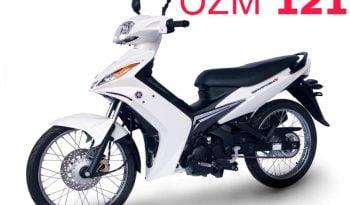 ΟΖΜ 121