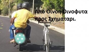 ΟΙΝΟΦΥΤΑ 00